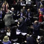 Con escándalo y botellazo incluido, Diputados sancionó la reforma del Consejo