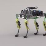 Crean robot con cuerpo de gato y alma de rescatista