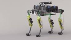 robot gato