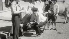 Gauchos en 1930