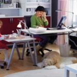 Tendencia irreversible: trabajar desde casa