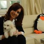 CFK mantiene su imagen positiva en 45%