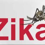Zika: Primer contagio por trasmisión sexual en Estados Unidos