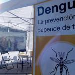 Dengue: se confirmaron más de 200 casos en la Ciudad