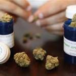 Crece el reclamo para legalizar el uso del cannabis para uso medicinal
