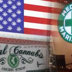 Estadounidenses, además de elegir presidente, se expresarán sobre marihuana, preservativos, uso de armas y acceso a la salud
