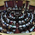Juran los 24 senadores electos