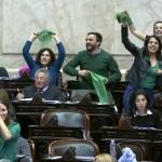 Jornada histórica en el Congreso: La despenalización del aborto recibió media sanción
