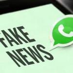 "WhatsApp lanza ""línea para denuncias"" para abordar los rumores o Fake News"