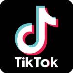 Que es  TIK TOK, la red social de los adolescentes que ya tiene estrellas propias