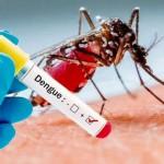 En una semana, aumentaron un 66% los casos de dengue en la Ciudad