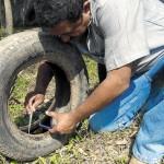 Piden declarar la emergencia sanitaria en la Comuna 10 por la crisis del dengue