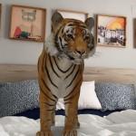 """Cómo encontrar los animales en 3D """"escondidos"""" en el buscador de Google"""