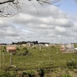 Para la postpandemia, Kicillof impulsa un plan de viviendas para 2.400 familias en La Plata