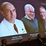 Premios Nobel 2020. Los Virologos que descubrieron la Hepatitis C